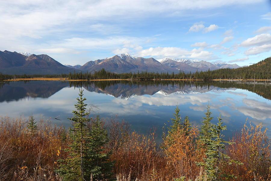 Reflections At Alaska's Mentasta Lake by Steve Wolfe