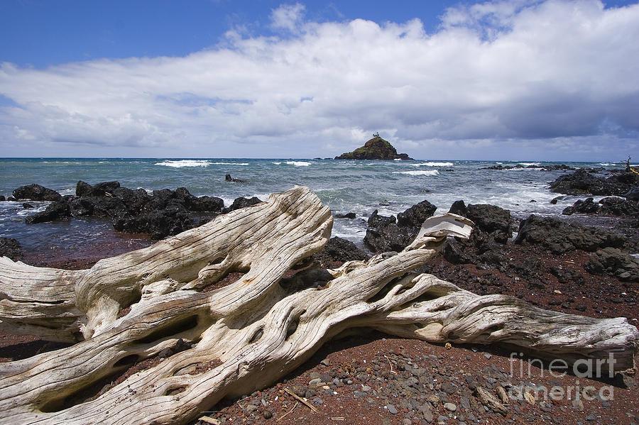 Alau Photograph - Alau Islet, Driftwood by Ron Dahlquist - Printscapes