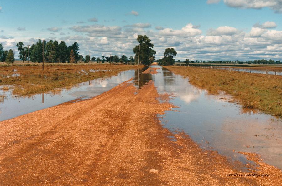 Australia Photograph - Albert Floods 1988 by Vicki Ferrari
