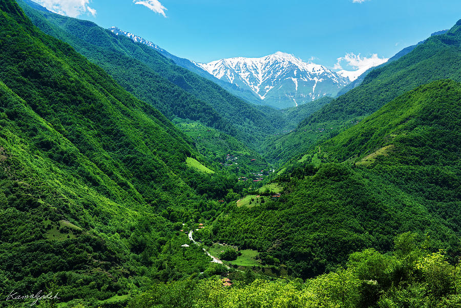Iran Photograph - Alborz Green by Mohsen Kamalzadeh