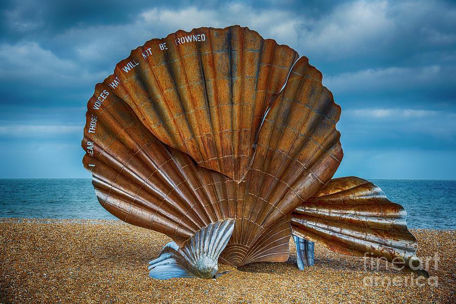 Aldeburgh Scallop Shell Photograph
