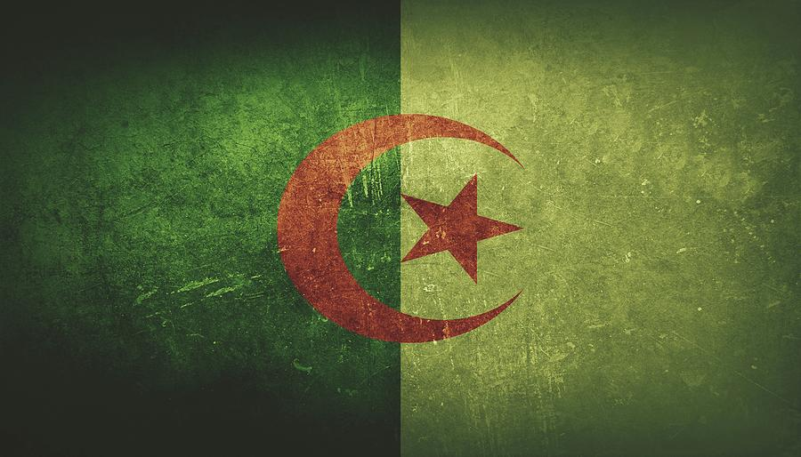 Algeria Painting - Algeria Distressed Flag Dehner by T Shirts R Us -