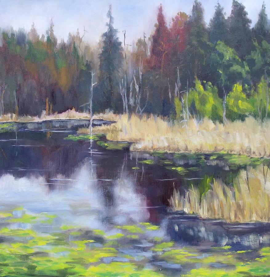 Algonquin Painting - Algonquin Marsh by Diane Daigle