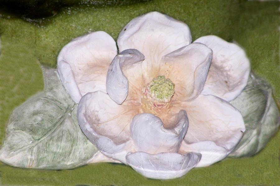 Flower Digital Art - Alien Bloom by Chuck Shafer