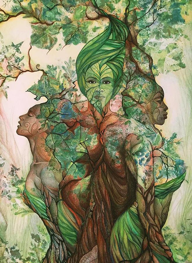 Nature Drawing - Living Tree by Bernadett Bagyinka