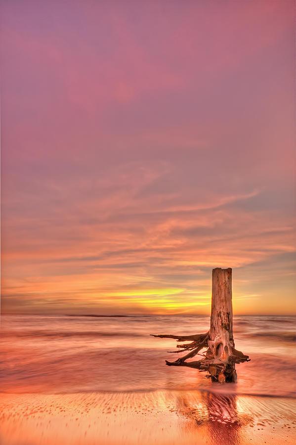 Sunset Photograph - All Aglow by Evelina Kremsdorf
