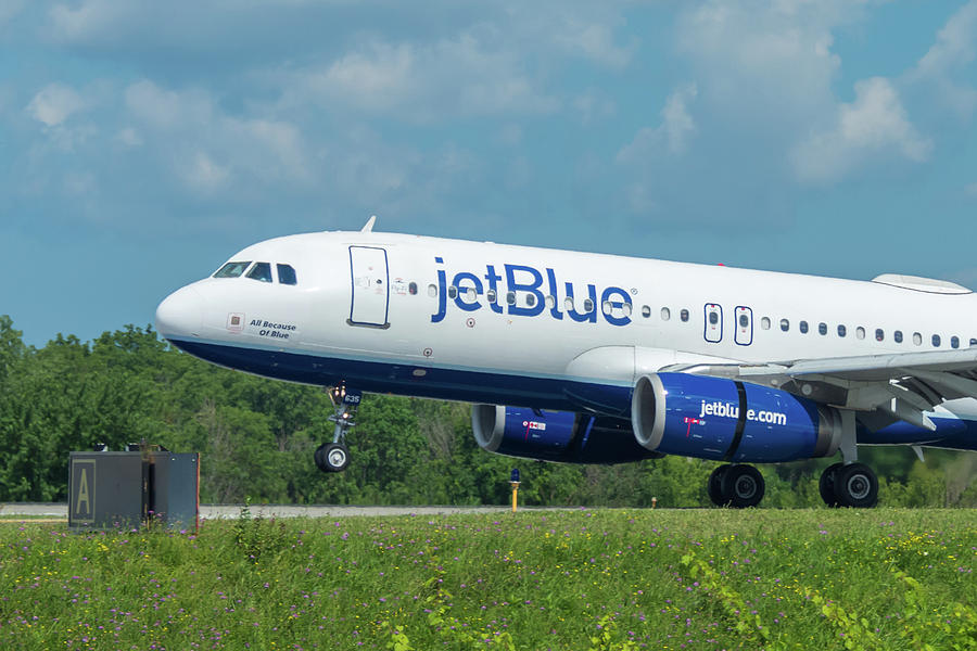 A320 Photograph - All Because Of Blue by Guy Whiteley