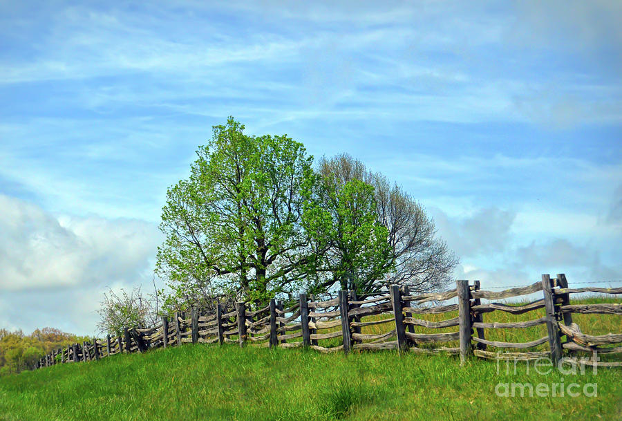 Split Rail Fence Photograph - All Fenced In Along The Blue Ridge Parkway by Kerri Farley