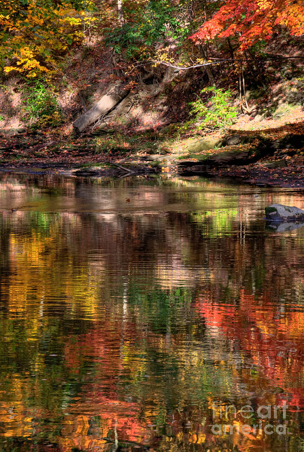 Fall Photograph - All I See Is Color by Tony  Bazidlo