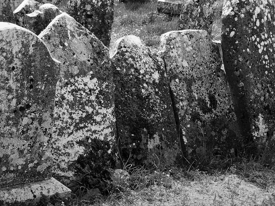 Ireland Photograph - All In A Row At Fuerty Cemetery Roscommon Ireland by Teresa Mucha