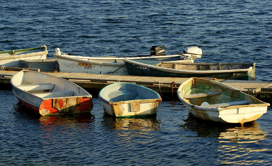 Boat Photograph - All In A Row by Lois Lepisto