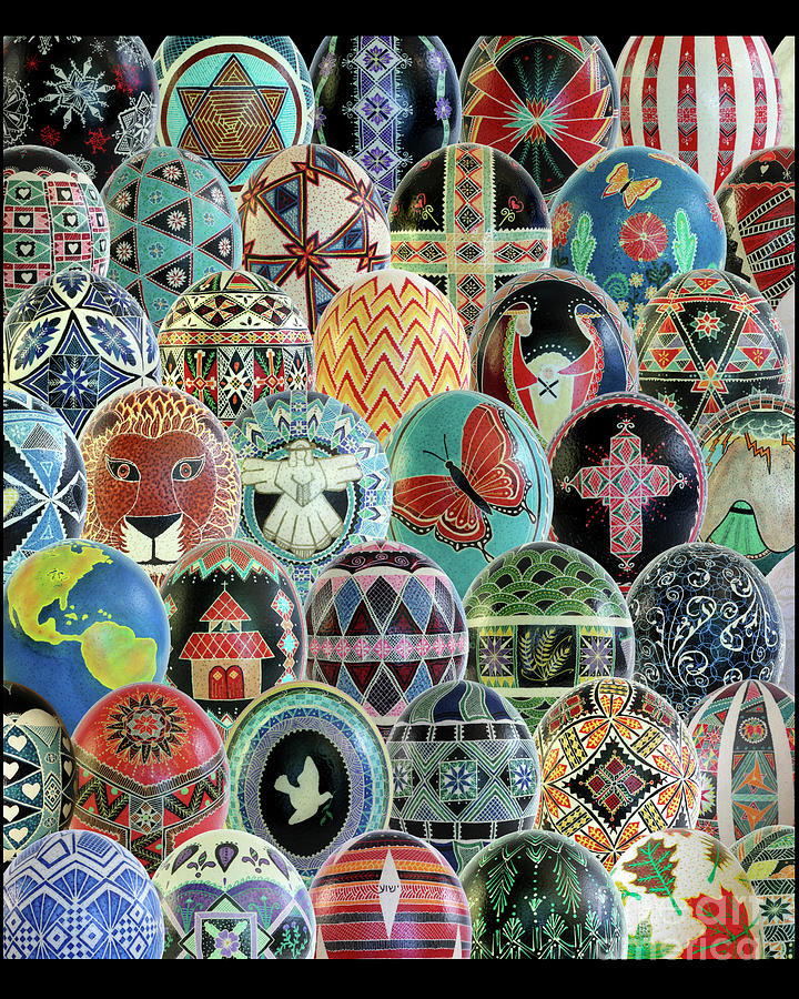 All Ostrich Eggs Collage by E B Schmidt