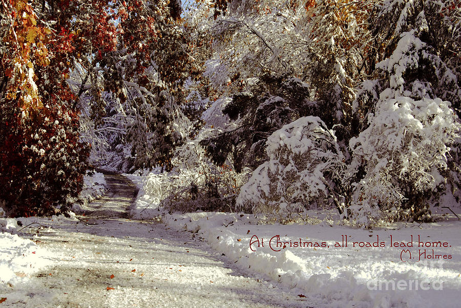 Winter Photograph - All Roads Lead Home by Sabine Jacobs