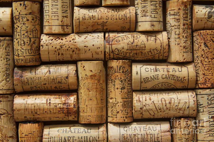 Wine Cellar Photograph - Grand Cru  by Anthony Jones