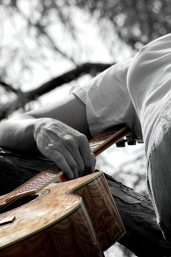 Guitar Photograph - Allegiance  by Elizabeth Hart