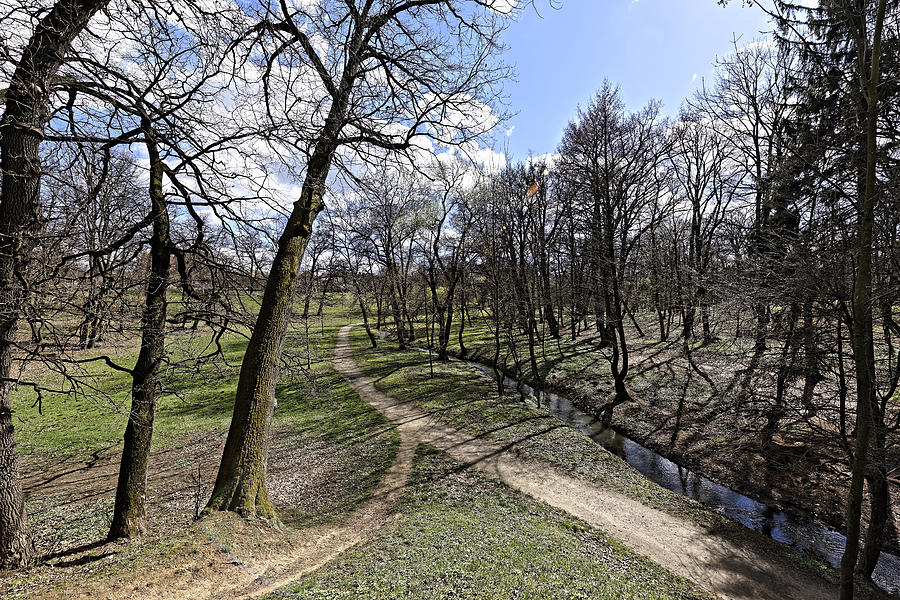 Alley Photograph - Alley of the river in the park Sub Arini Sibiu Romania by Adrian Bud