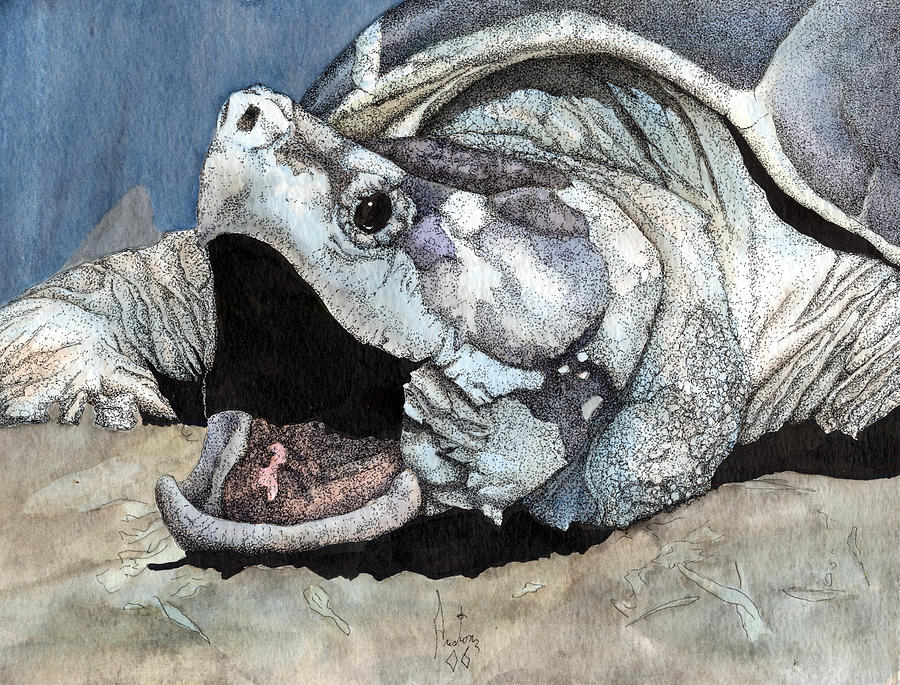 Alligator Snapping Turtle Painting by Preston Shupp