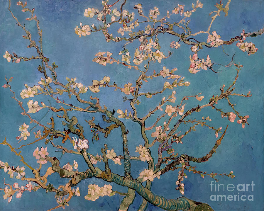 1890 Photograph - Almond Blossom by Vincent van Gogh