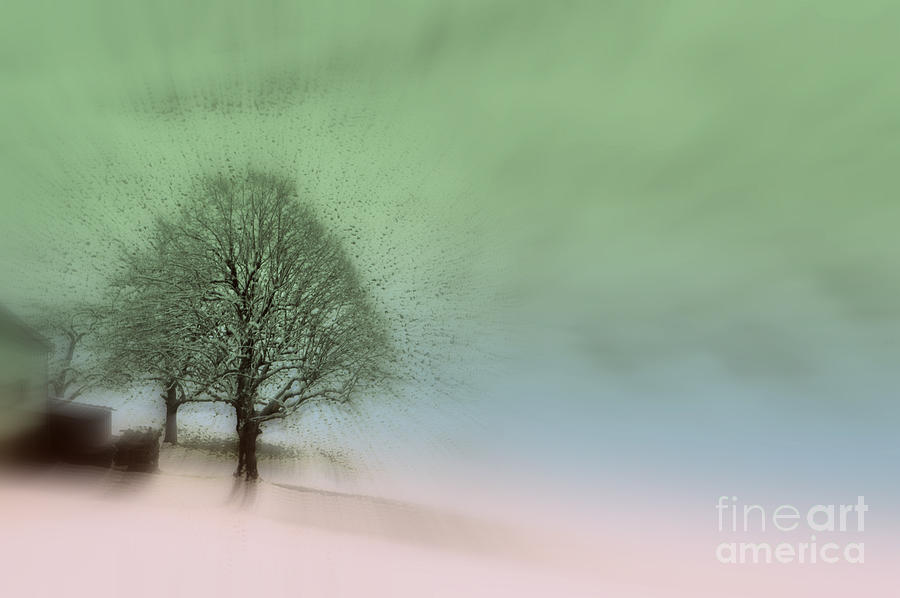 Almost a dream - Winter in Switzerland by Susanne Van Hulst