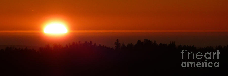 Sunset Photograph - Almost Gone by JoAnn SkyWatcher