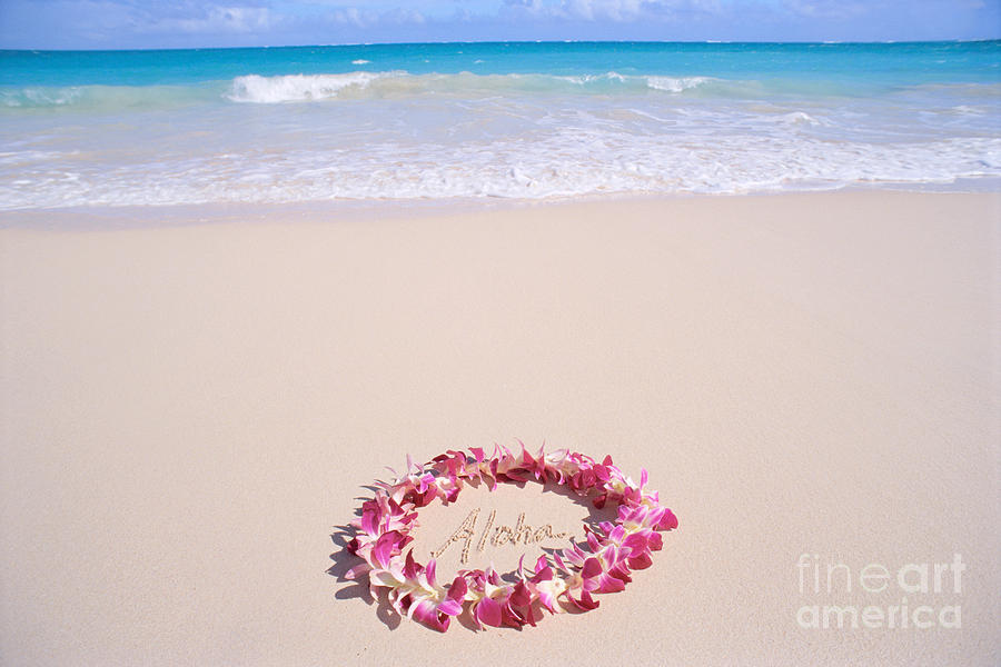 Afternoon Photograph - Aloha by Mary Van de Ven - Printscapes