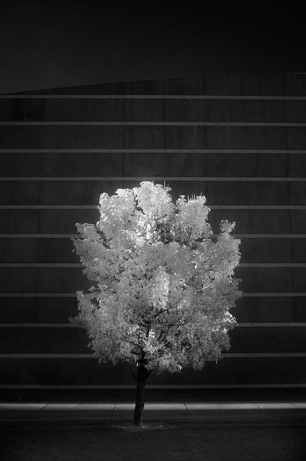 Alone by Brian Duram