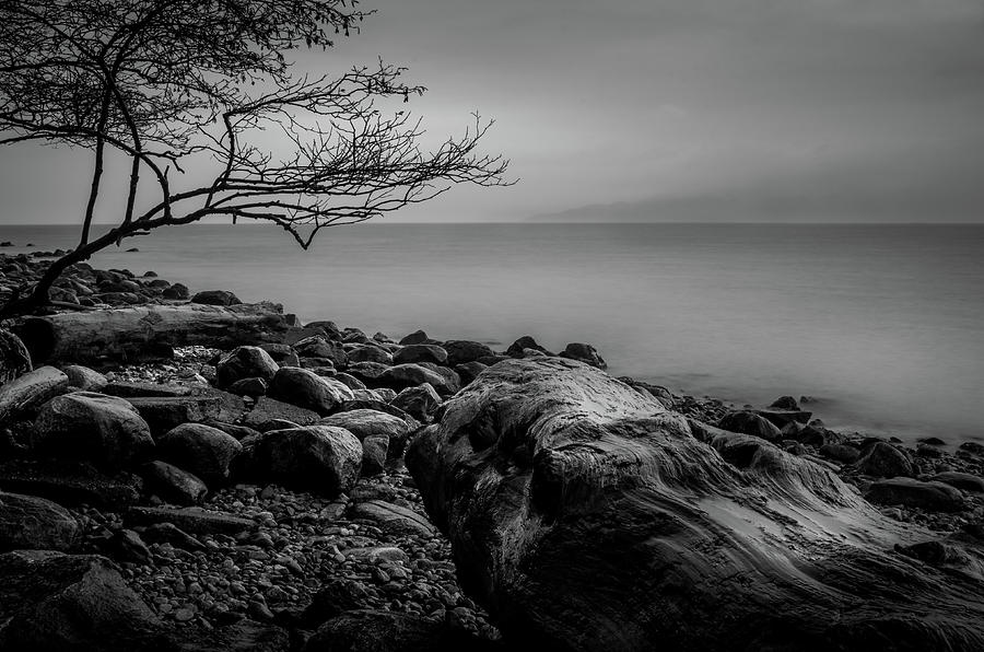 Alone on Spanish Banks by Brad Koop