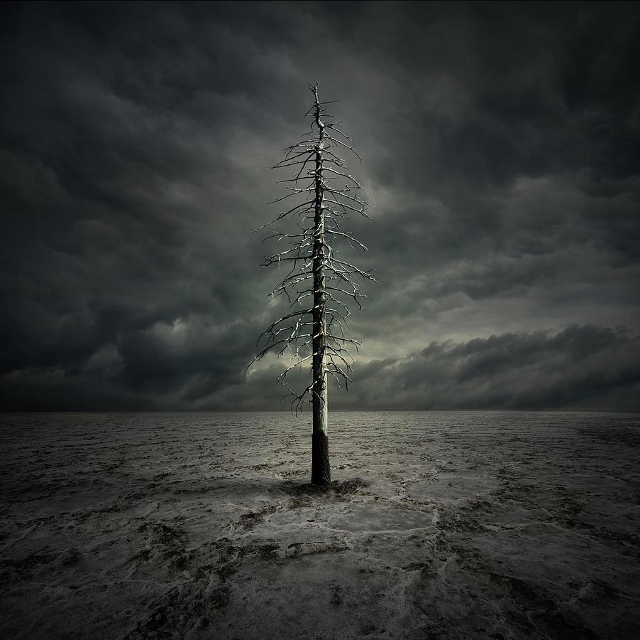 Cloud Digital Art - Alone by Zoltan Toth