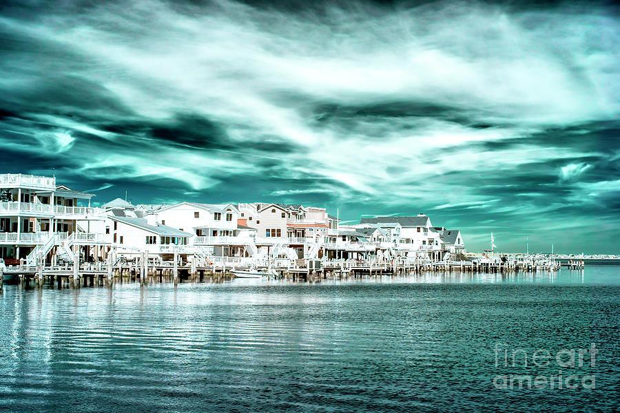 Bay Photograph - Along The Bay At Long Beach Island Infrared by John Rizzuto