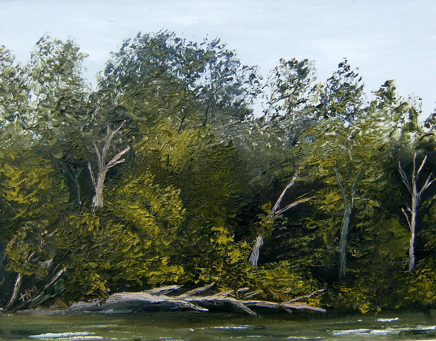 Landscape Painting - Along The Catawba River by Tami Booher