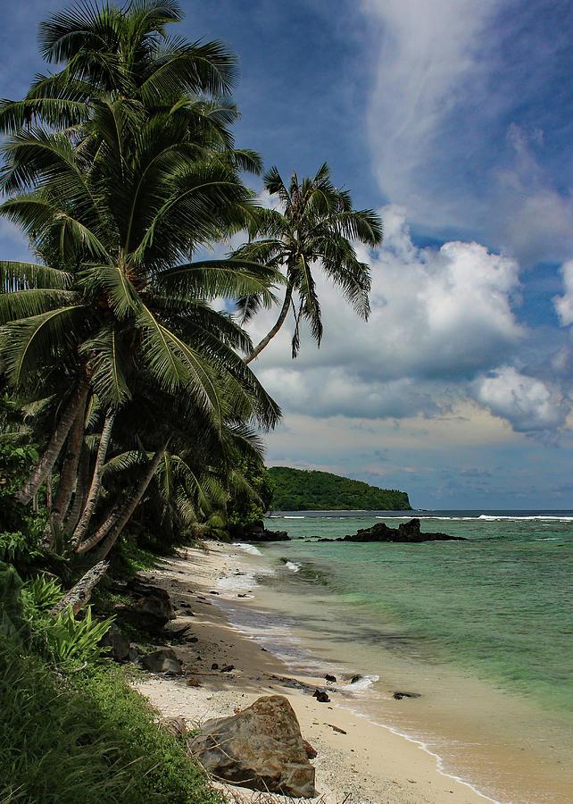 Along the Coast of Eastern Tutuila by Brenda Smith DVM