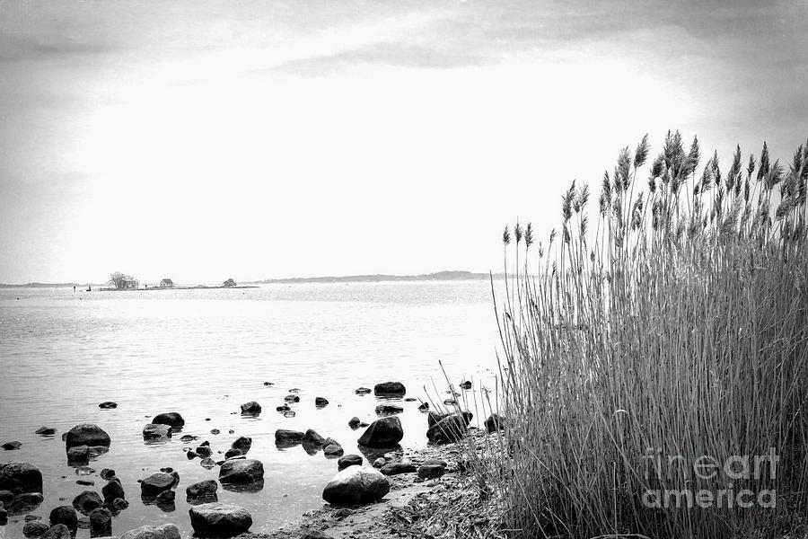 Shore Photograph - Along The Shore by Joe Geraci