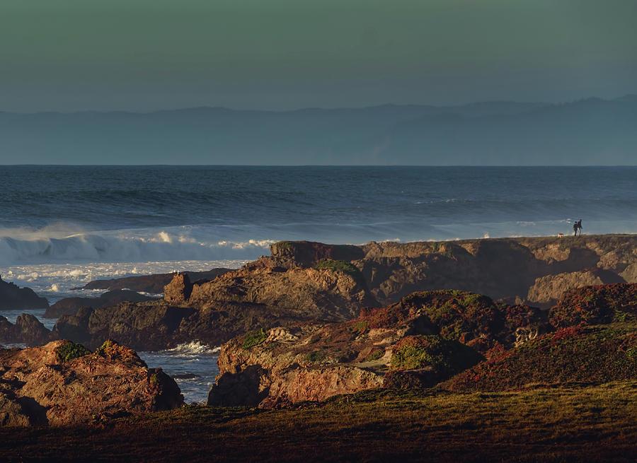 Along The Shore Photograph
