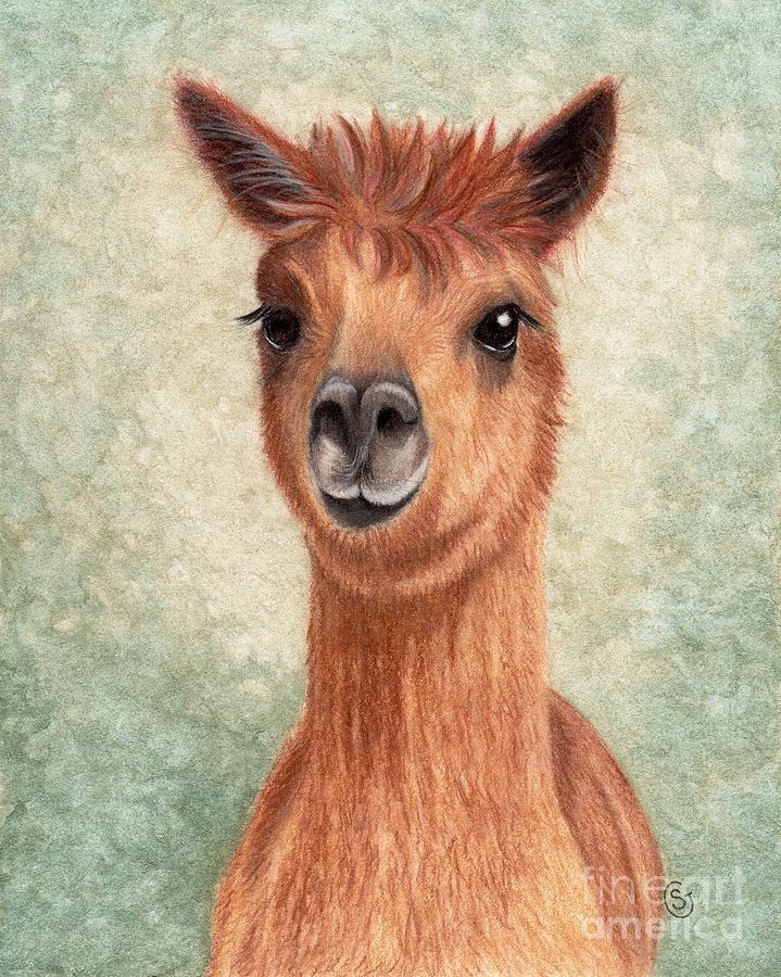 Alpaca Painting - Alpaca - So Sweet by Sherry Goeben