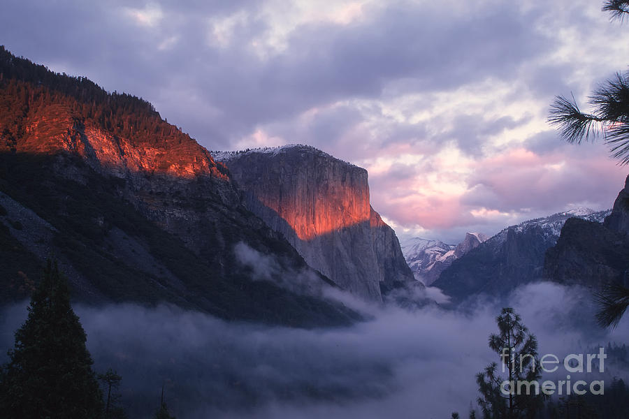 Yosemite Photograph - Alpen Glow On El Capitan by Stan and Anne Foster