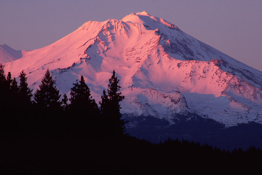 Mt Shasta Photograph - Alpenglow - Mt Shasta by Denise Dethlefsen