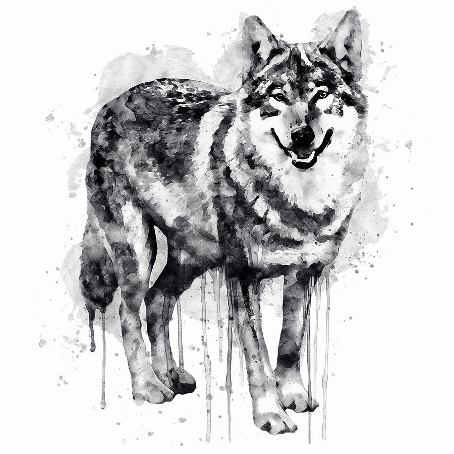 Image - 18082951 wolf-clipart-picture-black-and-white-wolf ... |White Wolf And Black Wolf Art