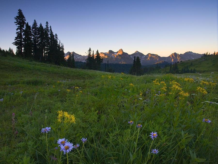 Dawn Photograph - Alpine Dawn by Mike  Dawson