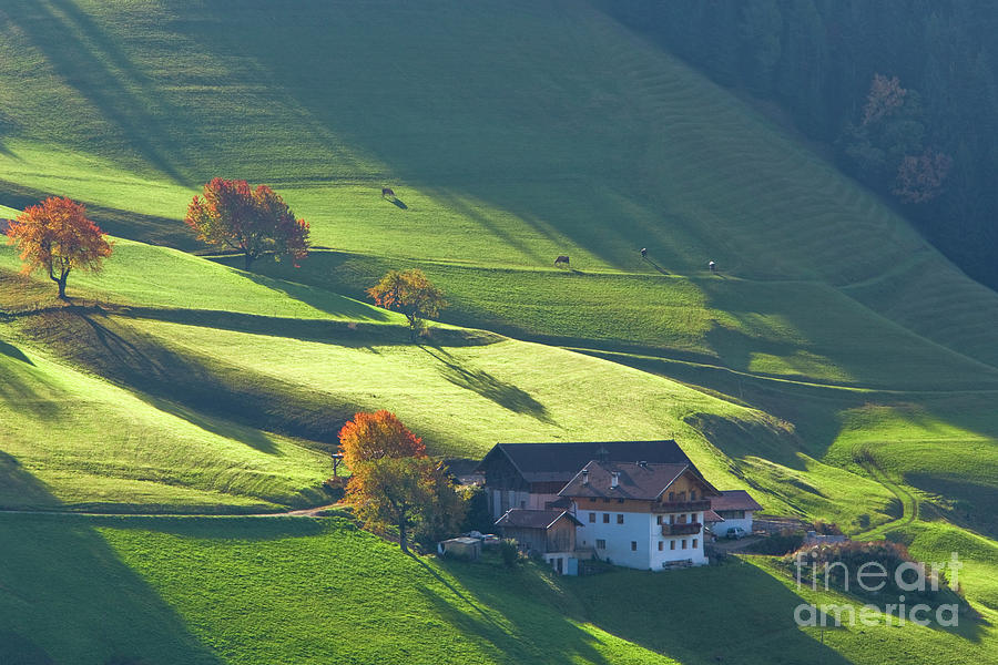 Alps Photograph - Alpine Farm And Meadows In Autumn by Damian Davies
