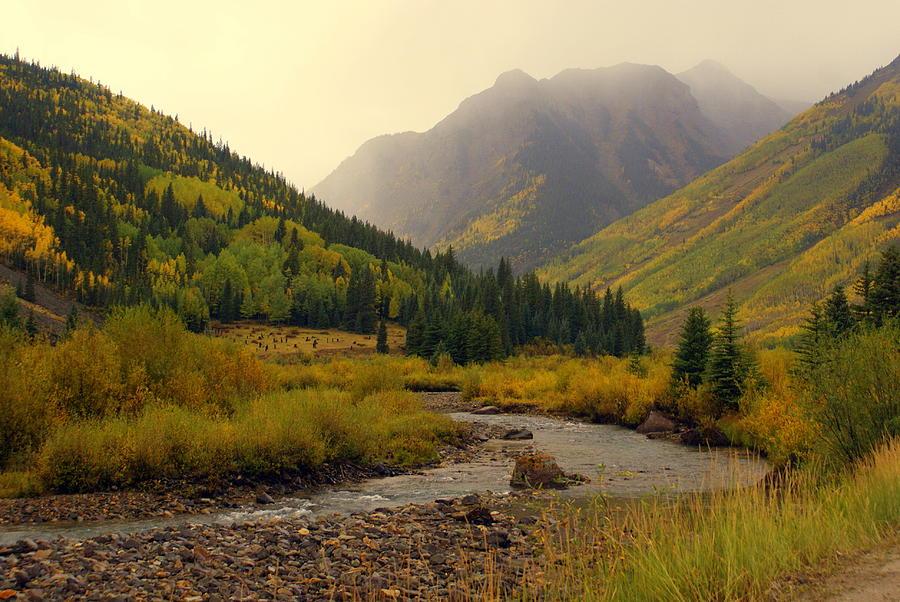 Colorado Photograph - Alpine Loop Fall by Marty Koch