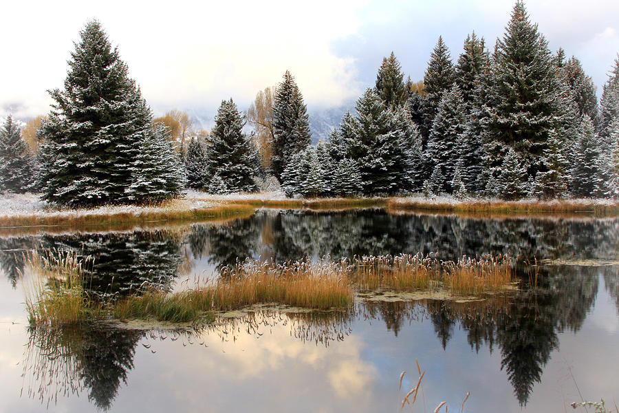 Alpine Photograph - Alpine Pond by David Kocherhans
