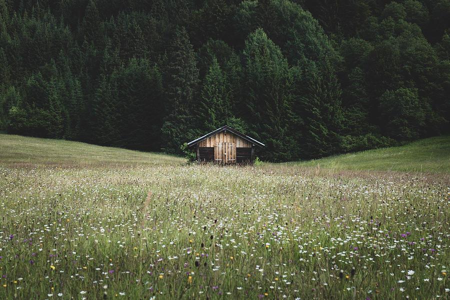 Alpine Photograph - Alpine symmetry by Dalibor Hanzal