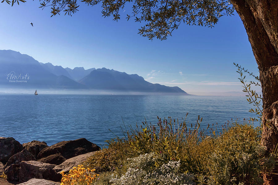Alps mountains upon Geneva lake, Montreux, Switzerland by Elenarts - Elena Duvernay photo