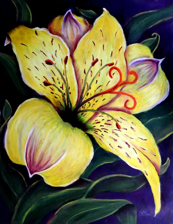 Lily Of The Incas Painting - Alstroemeria by Charlie Good