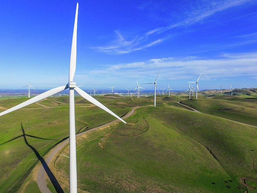 Windmills Photograph - Altamont Windfarm by John King