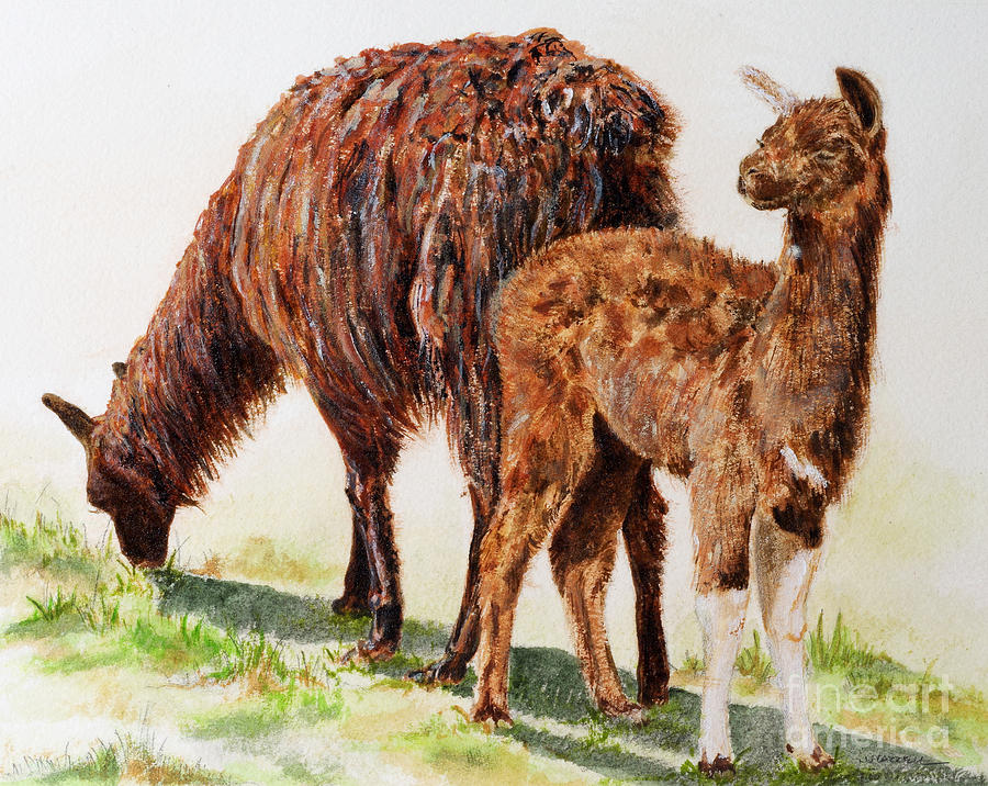 Llamas Painting - Altiplano natives by Monica Carrell