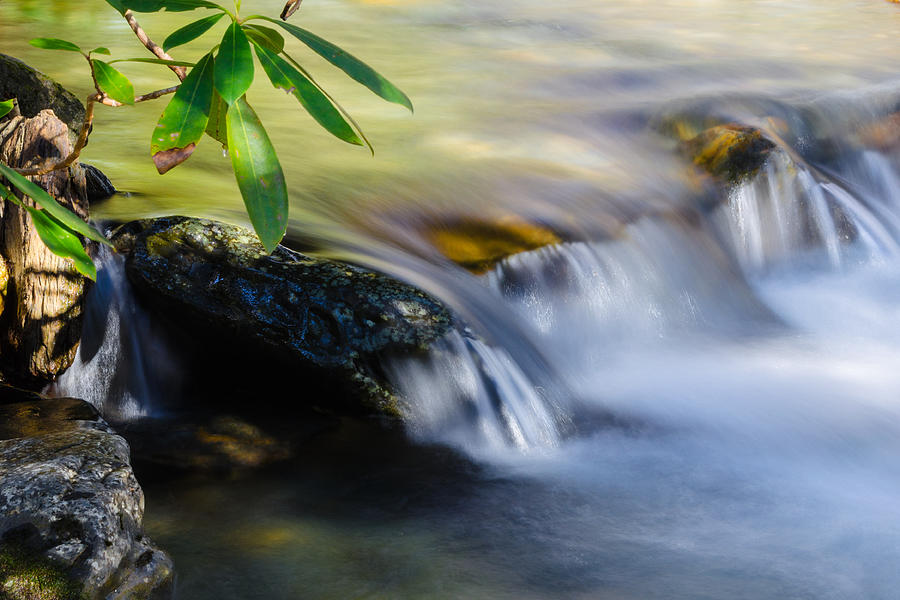 Great Smoky Mountains Photograph - Alum Allegretto by Kristina Plaas