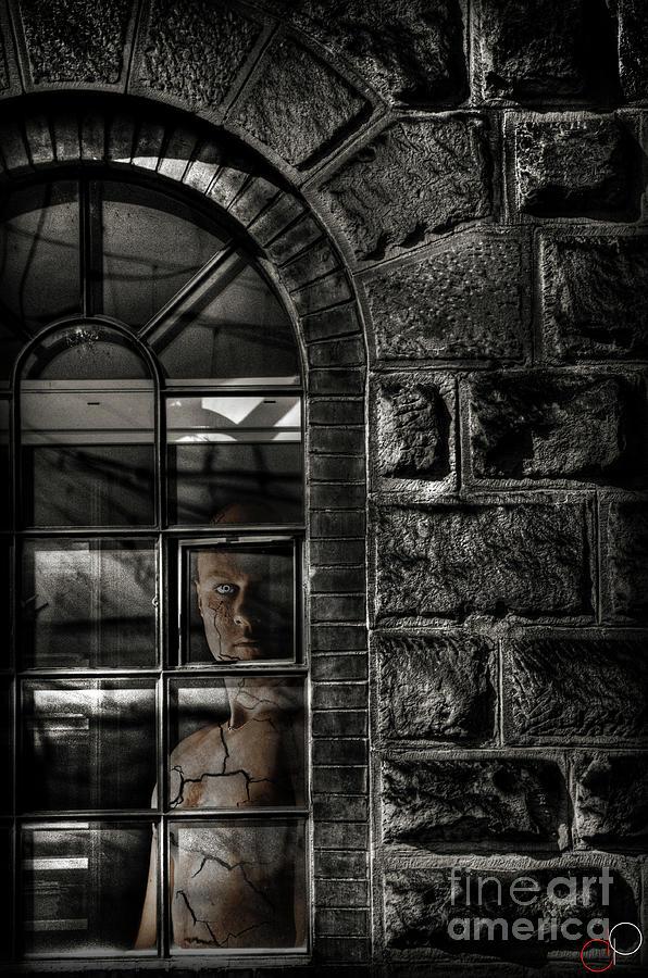 Nikon Photograph - Always Watching by Luke Griffin