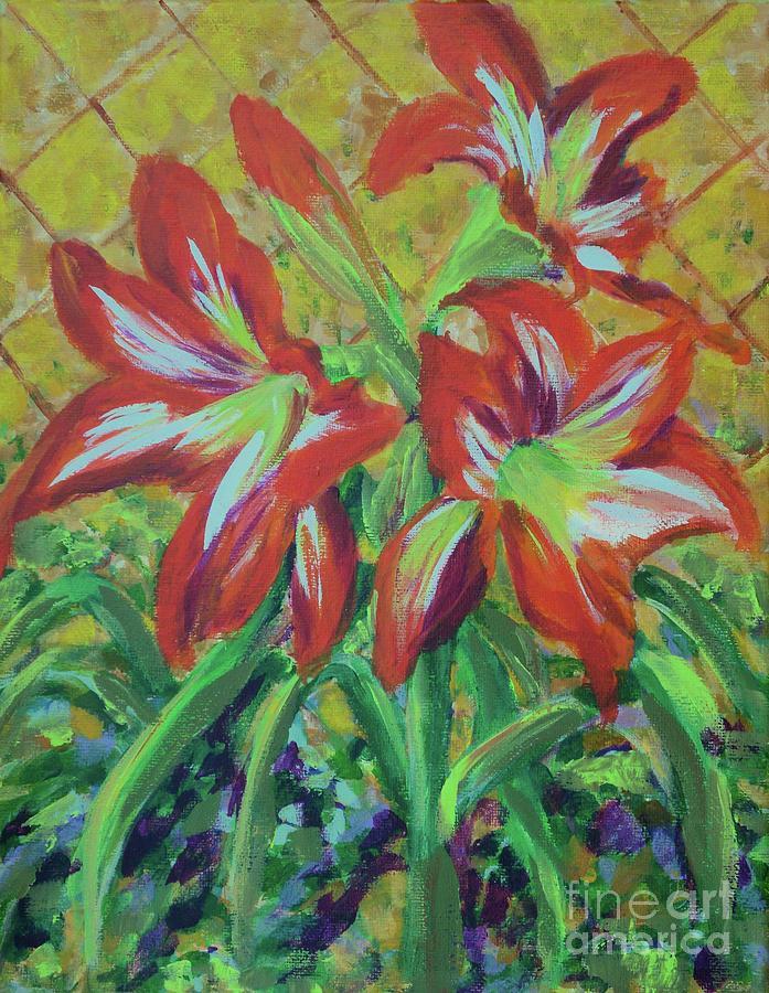 Amaryllis by Gail Kent