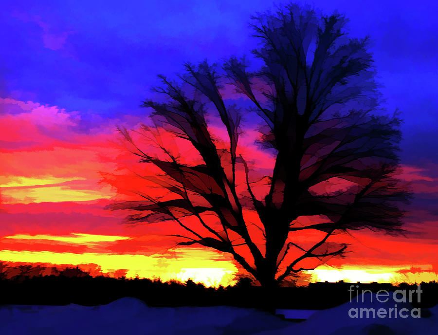 Sunrise Photograph - Amaze Blaze and Mystify by Christine Segalas